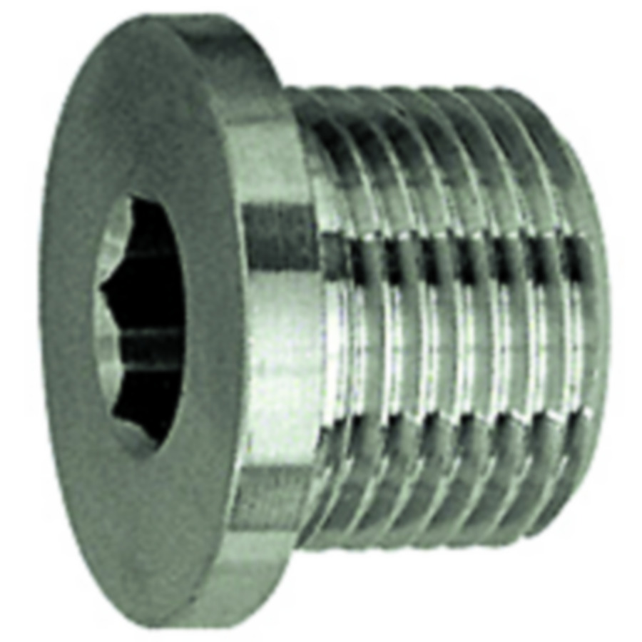 Screw plugs - stainless steel